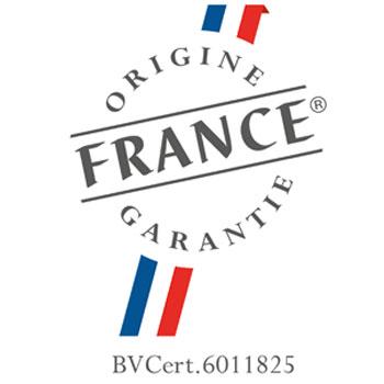 Logo OFG